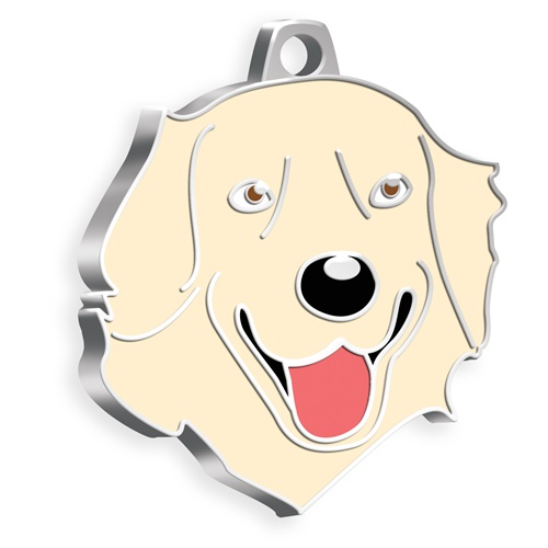 Golden Retriever Köpek Künyesi