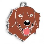 Golden Retriever Kahverengi Köpek Künyesi