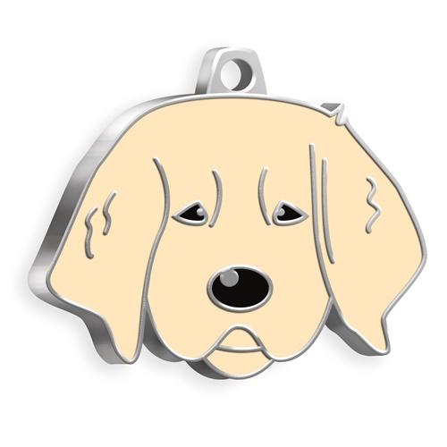 Yavru Golden Köpek Künyesi